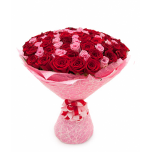 75 red and pink roses